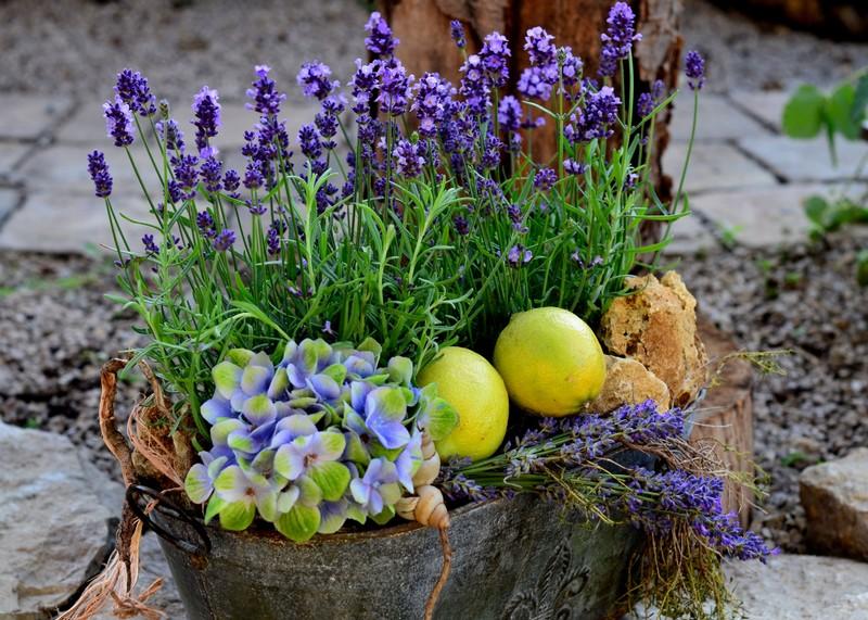Tischdeko Gartenbau Taglieber